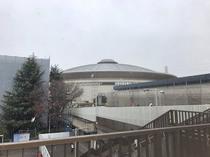 ファミリーDay名古屋